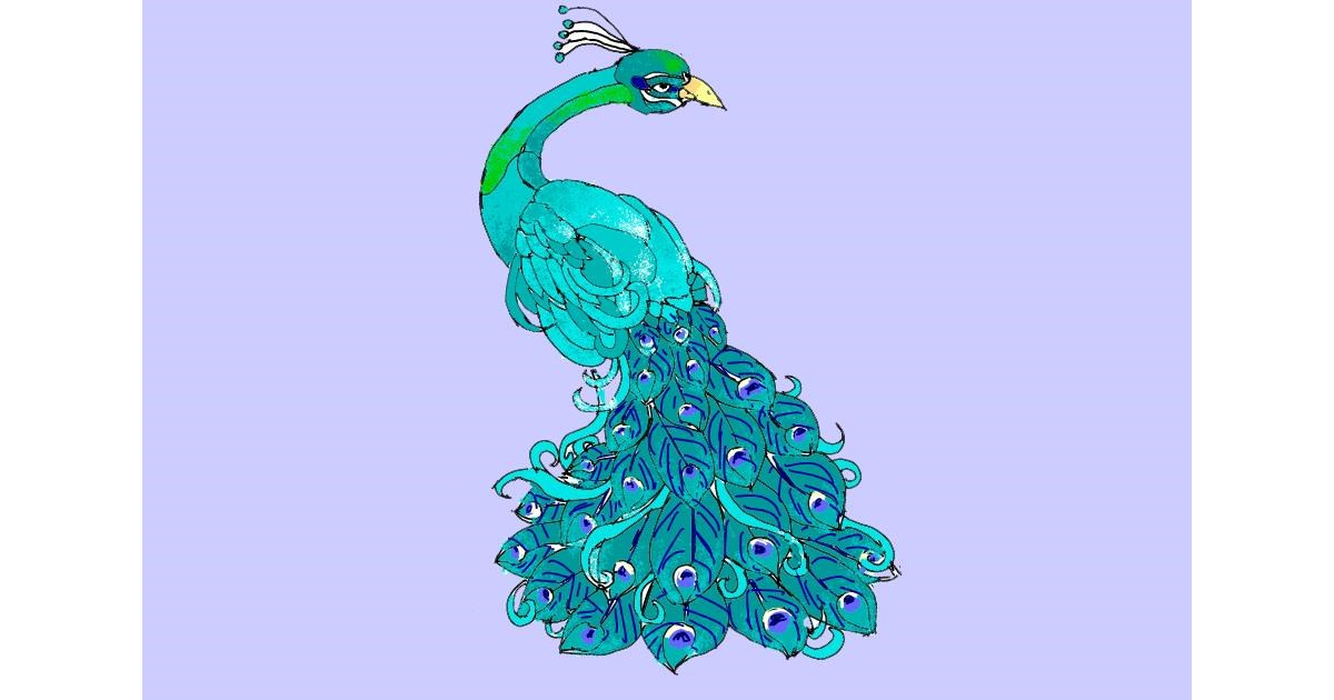 Peacock drawing by ThasMe13