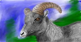 Drawing of Goat by Soaring Sunshine