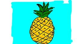 Pineapple drawing by Anonymous