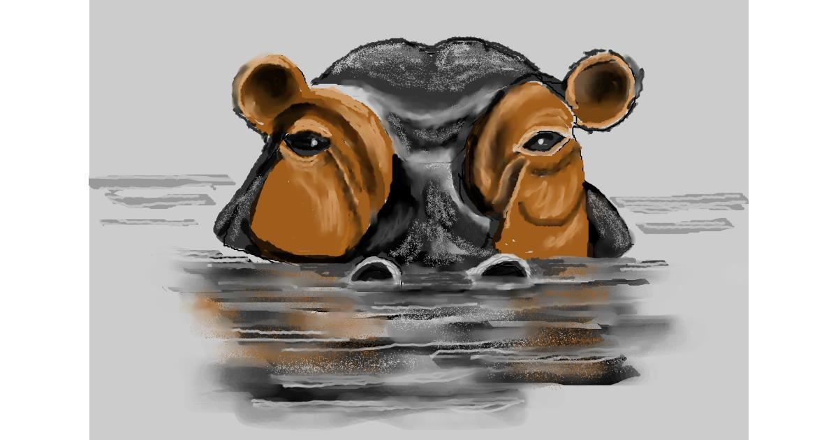 Hippo drawing by MINNA