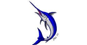 Swordfish drawing by Iris