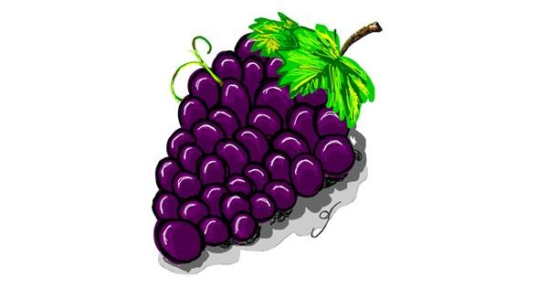 Grapes drawing by Geo-Pebbles