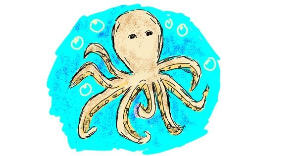 Octopus drawing by Lsk