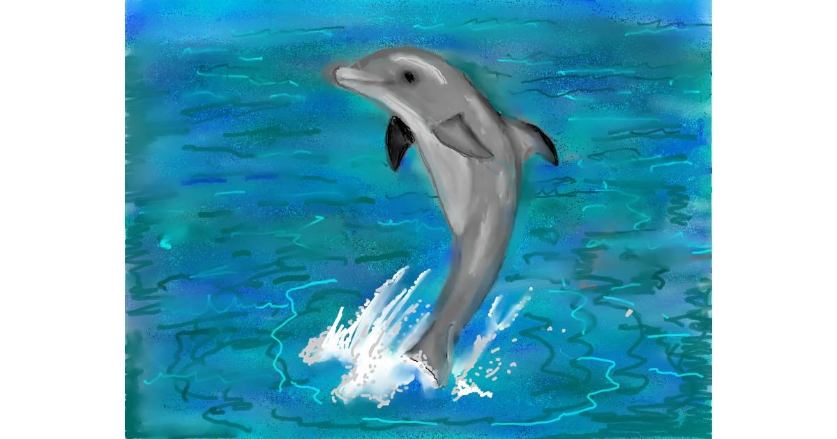 Dolphin drawing by SAM 🙄