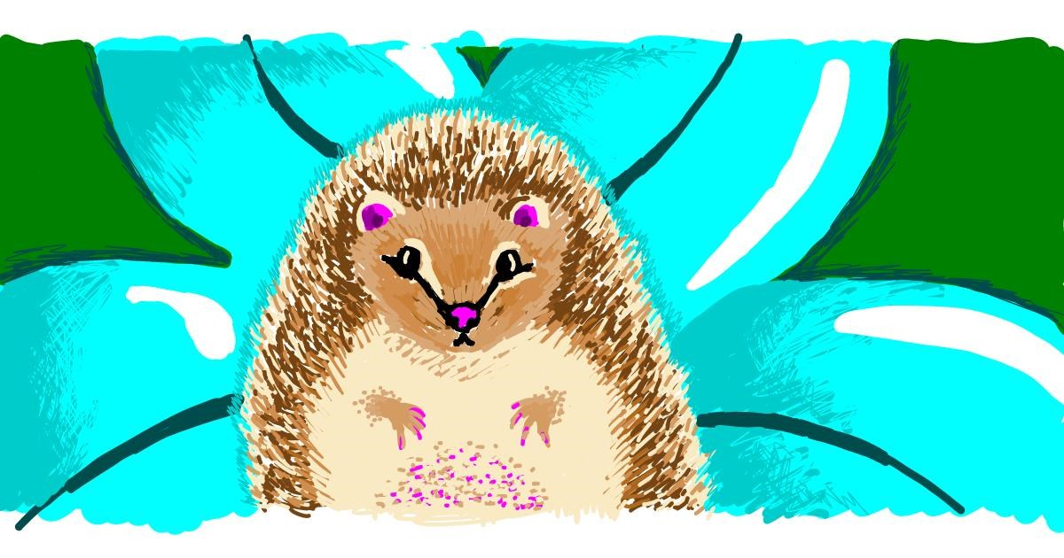 Hedgehog drawing by b