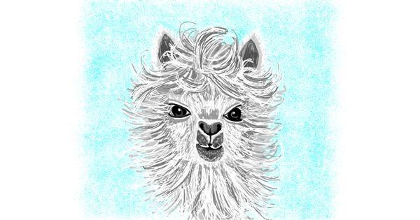 Llama drawing by Geo-Pebbles