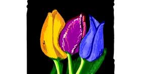 Drawing of Tulips by Geo-Pebbles