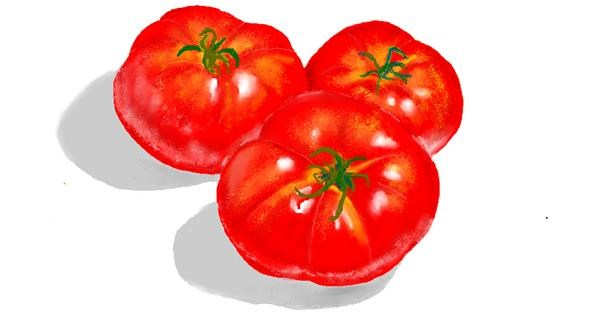 Tomato drawing by GJP