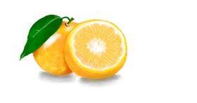 Drawing of Orange by Debidolittle