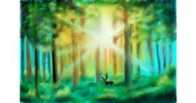 Drawing of Forest by Wizard