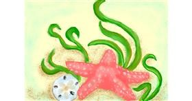 Starfish drawing by Debidolittle