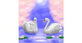 Swan drawing by Joze