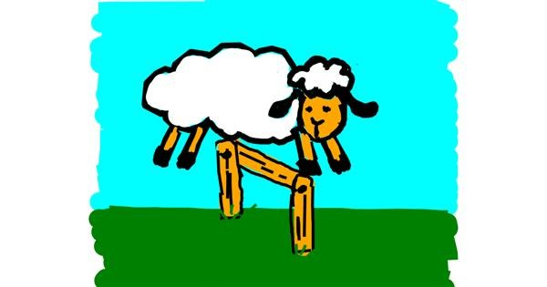 Sheep drawing by Kamie