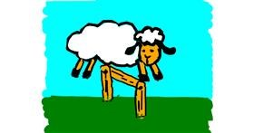 Sheep drawing by Kamie