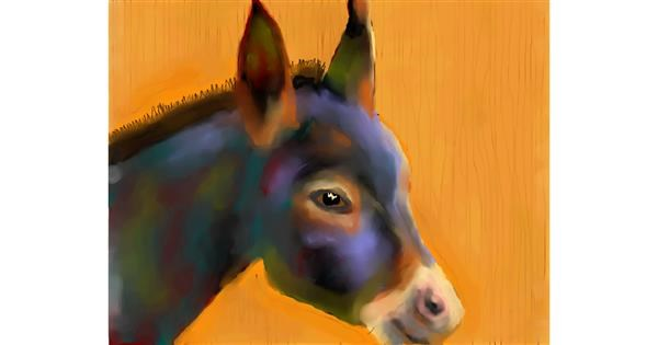 Donkey drawing by Sirak Fish
