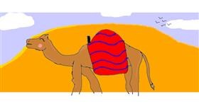 Camel drawing by Red Ibis