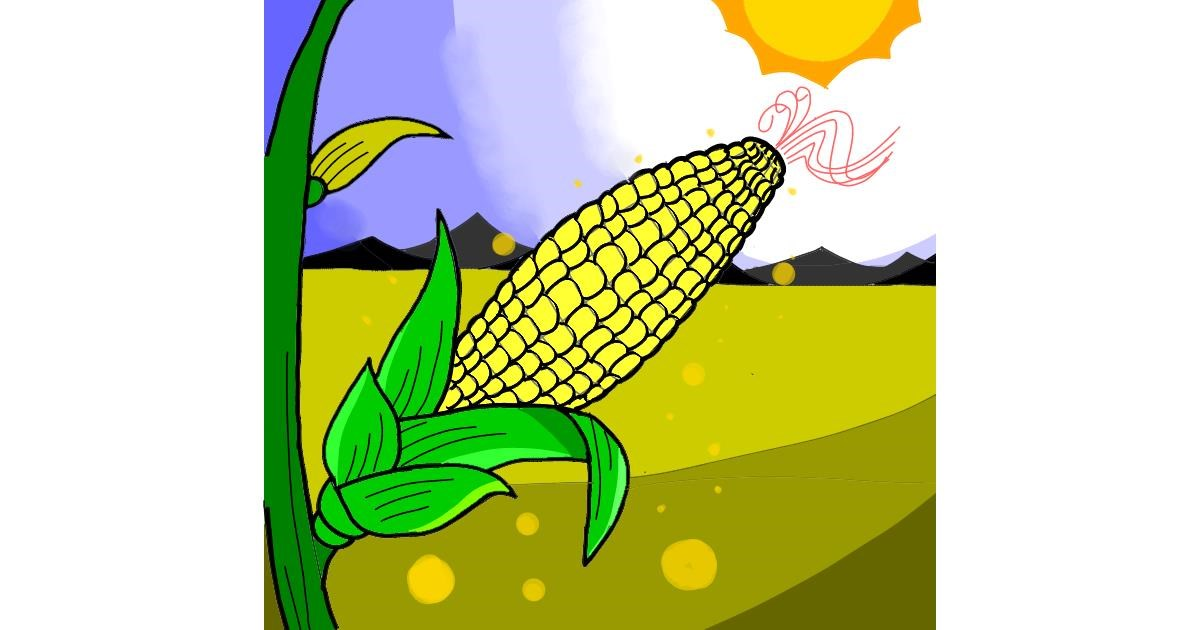 Drawing of Corn by チョコせんせい