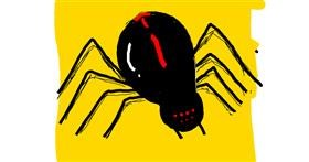 Drawing of Spider by Kaila