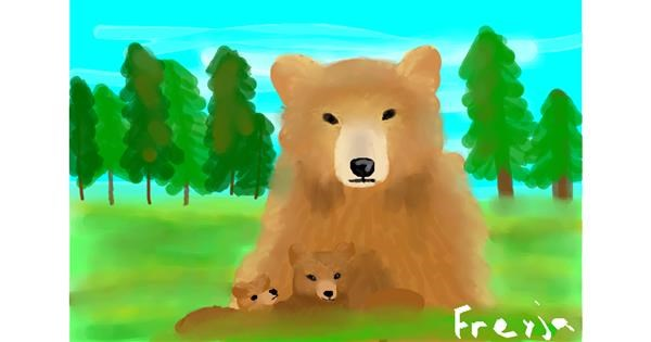 Bear drawing by Freyja