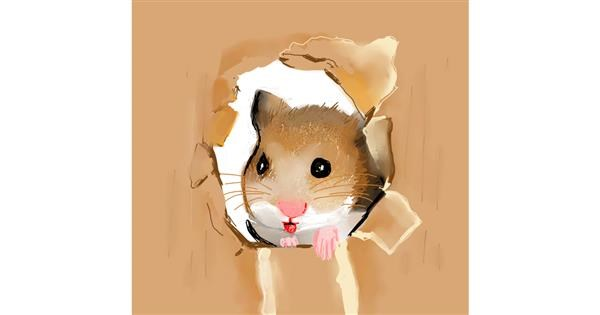 hamster drawing by Claria