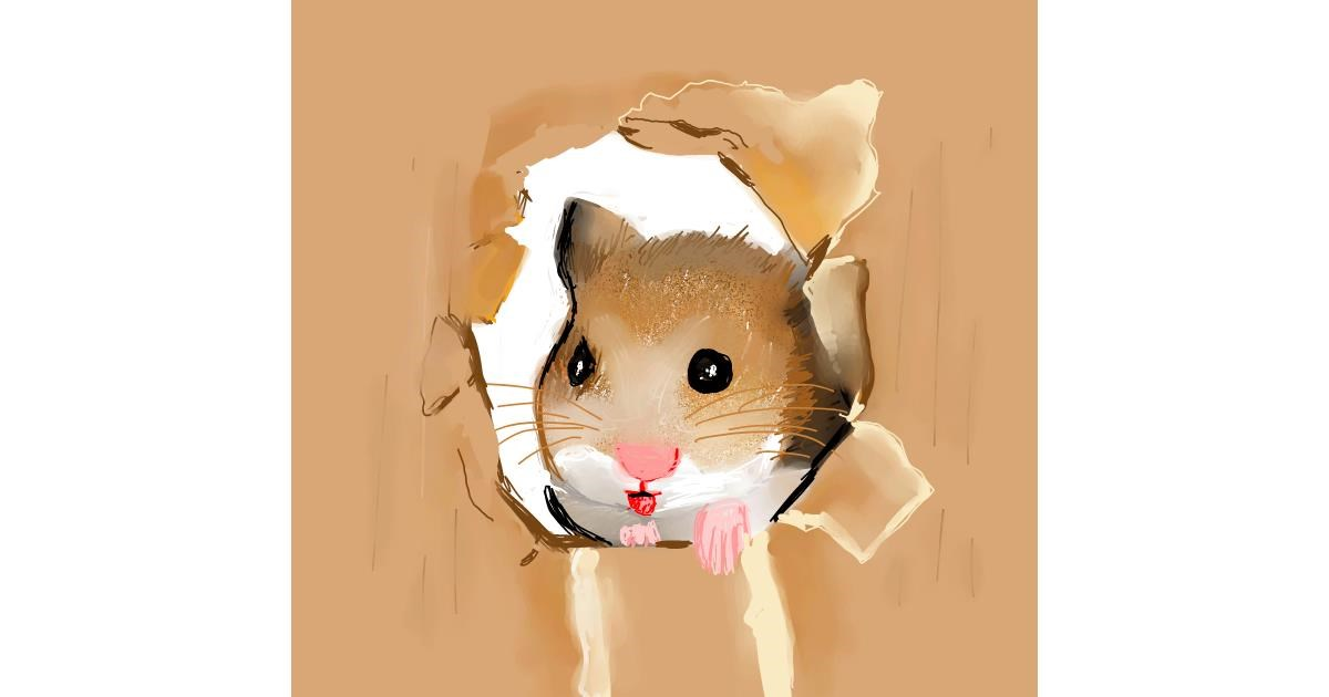 Drawing of Hamster by Claria