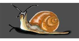 Drawing of Snail by Debidolittle