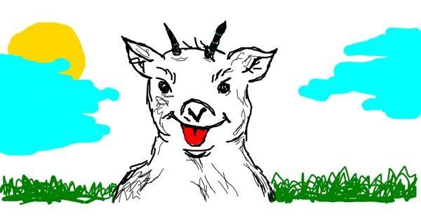 Goat drawing by bogi
