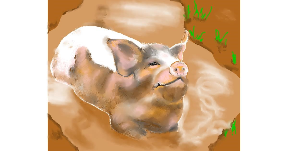 Pig drawing by Cec