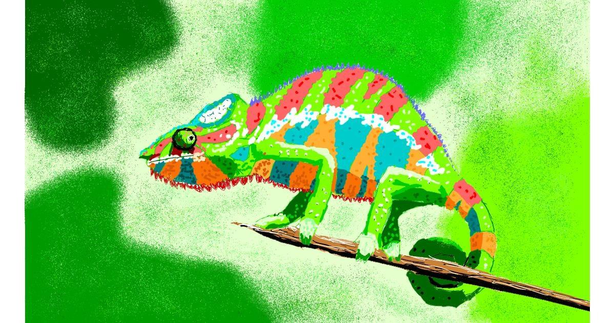 Chameleon drawing by Sam
