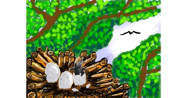 Nest drawing by Michelle