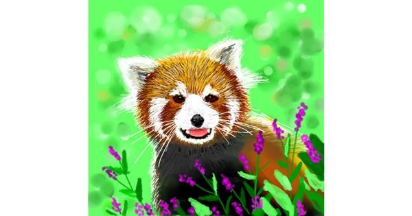 Red Panda drawing by mr yj