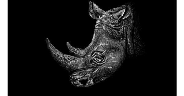 Rhino drawing by Sam