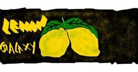 Lemon drawing by Anita