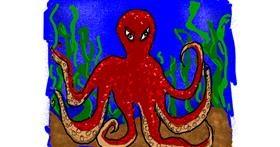 Octopus drawing by Cherri