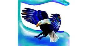Eagle drawing by 🌏rhythm💐