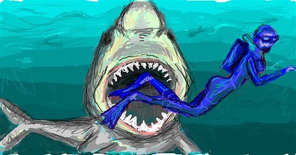 Shark drawing by Paranoia
