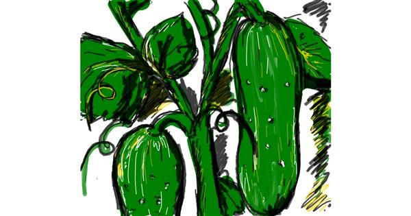 Cucumber drawing by Nikol
