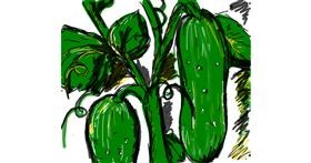 Cucumber drawing by Nikol