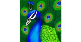 Drawing of Peacock by Bishakha