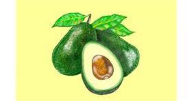 Avocado drawing by GJP