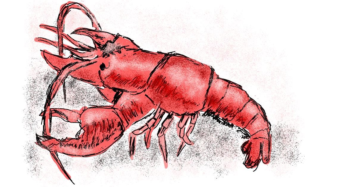 Drawing of Lobster by Lsk