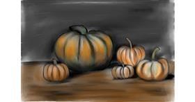 Drawing of Pumpkin by Jan