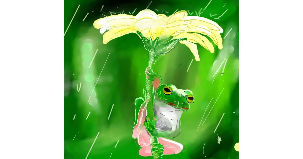 Drawing of Frog by Nru
