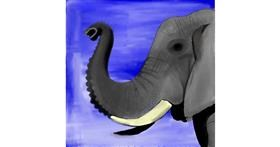 Drawing of elephant by Lou