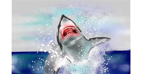 Shark drawing by Rose rocket