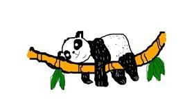 Panda drawing by Ameena