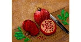 Pomegranate drawing by Tara