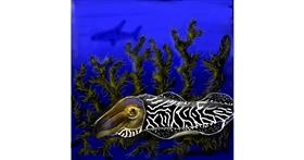 Cuttlefish drawing by Leah