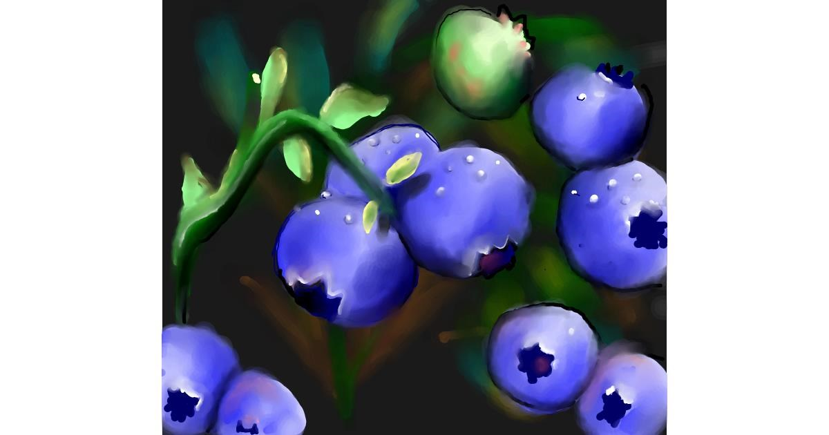 Blueberry drawing by Leah