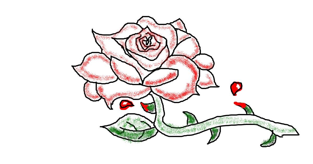 Rose drawing by Lou